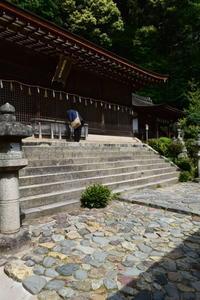 京都府宇治市の宇治上神社 - 近代建築写真室@東京