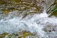永遠のいのちへの水 - 新しい歌を歌おう