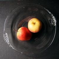 貝のお皿と石ころ深鉢 - warble22ya