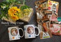 信州から届いたSandyマグカップ - Kyoko's Backyard ~アメリカで田舎暮らし~