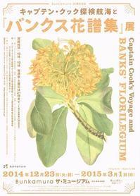 キャプテン・クック探検航海と『バンクス花譜集』展 - Art Museum Flyer Collection