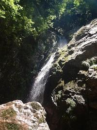 暑気払いの沢遊びⅡ…奥美濃・揖斐小津、白倉谷 - 山にでかける日