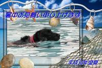 酷暑💦 - Genki DaysⅡ