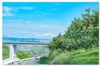 Sun 3 Sunday。夏空と桃畑と。 - Yuruyuru Photograph