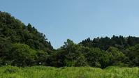 今日も暑い!! - 千葉県いすみ環境と文化のさとセンター