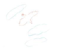 見上げたら飛んでいた鳥 - イラストレーション ノート