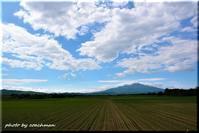 夏よ来い! - 北海道photo一撮り旅