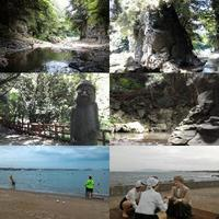 Jeju in the Summer of 2018 2 - travel dream world