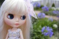 アトレの屋上でカデンスさん外撮り - T's Photo Diary3(Grass Field*)