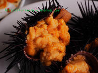 青森、浅虫の「正立食堂」に旬のウニを食べに行ってみた - 台湾破れかぶれ日記