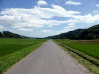 夏、青さ、自転車をこぐ - 田舎と孤独と私