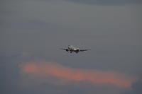 OKA - 43 - fun time (飛行機と空)