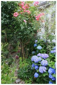 3連休お待ちしております! - natu     * 素敵なナチュラルガーデンから~*     福岡で庭造り、外構工事(エクステリア)をしてます