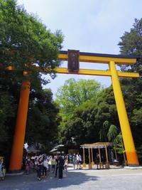 川越氷川神社自然の音に囲まれる - 歌舞伎と神社メモ