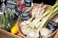 無農薬無化学肥料野菜 / Breeze Jr - bambooforest blog