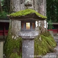 「上新道から日光二荒山神社」 - こころ絵日記