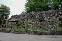 2018/04/30 伊豆シャボテン公園5 - 墨色の鳥籠