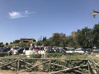 モンテリッジョーニのお祭り最終日とW杯決勝 - フィレンツェのガイド なぎさの便り