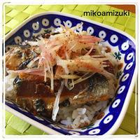 ギックリ腰で始まった連休&イワシの蒲焼丼 - 編み好き@amiami通信