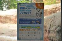 今日のクッキー(お魚プレ)@のんほいパーク - peanut daily 3