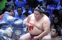 御嶽海9連勝!大相撲名古屋場所 - 東金、折々の風景
