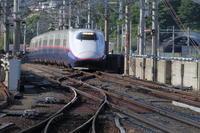 ちょっとだけよ福島遠征④~ホームから「やまびこ」~ - 新幹線の写真
