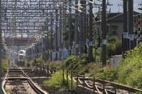 ちょっとだけよ福島遠征⑨~新幹線の前を横切る~ - 新幹線の写真