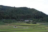 ちょっとだけよ福島遠征⑩~庭坂の大カーブ~ - 新幹線の写真