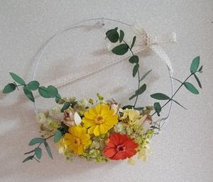 花の輪クラブ・藤沢 7月13日「夏の花」 -  Flower Class