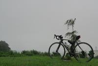 梅雨明けたよね?霧雨の七ヶ浜ポタリング - 絵具箱の海