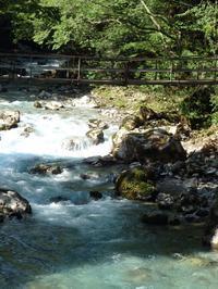 『円原川の涼風を感じながら・・・・・』 - 自然風の自然風だより