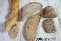 パン屋。 - 染め色・いろいろ