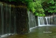 白市の滝~レイクガーデン・・・涼感 - hananowafootwork
