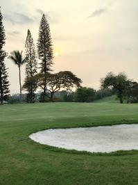 頚椎捻挫3ヶ月 - Books & Hawaii & Golf