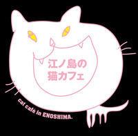 【夏休み企画】人気だった湘南の猫カフェブログ - お料理王国6