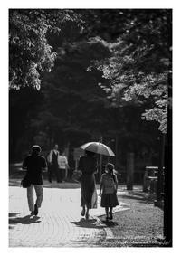 涼やか - ♉ mototaurus photography