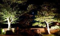 月のひかりにてらされて - 金沢犀川温泉 川端の湯宿「滝亭」BLOG