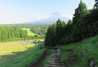 夏の越前岳(1504m) - 山の花、町の花