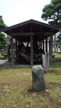いざり松から三角寺 - (まめ)たぬきの雑記