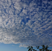 5回目の梅雨明け - 院長のブログ