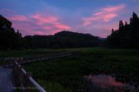 染まる湿原 - デジタルで見ていた風景