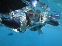 初スノーケル(^^♪ - 沖縄ダイビング&フィッシング DSA ブログ