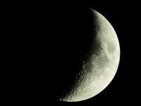 月齢5.0をBORGで - ブナの写真日記