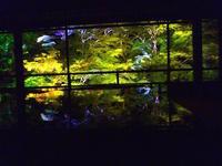 瑠璃光院の特別拝観で青もみじのライトアップを鑑賞 - mayumin blog 2