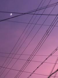 ピンクのイマソラと黄色&白のダブルフェース織り上がり。 - 手染めと糸のワークショップ