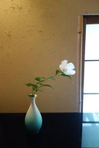 夏の白ー白い木槿 - g's style day by day ー京都嵐山から、季節を楽しむ日々をお届けしますー