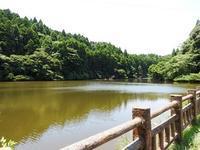 もうすぐ夏休み - 千葉県いすみ環境と文化のさとセンター