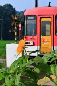 横田駅 - ゆる鉄旅情