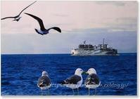 次男のバースデー祝の日帰り旅:伊勢湾フェリーのポストカード&風景印 - Mimpi Bunga の旅の思い出
