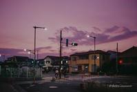 pink - BobのCamera